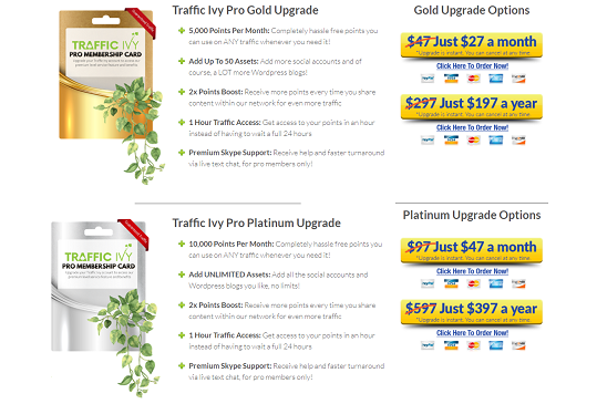 traffic-ivy-pricing