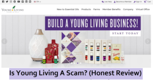 build-a-Young-living-business