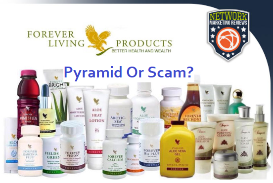Is Forever Living A Pyramid Scheme Or Scam? [Find Out Before Joining]